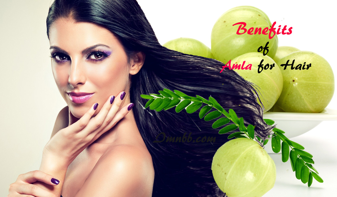 Benefits of Amla for Hair: